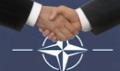 icon NATO
