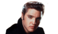 icon Elvis Presley