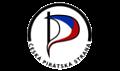 icon Česká pirátská strana