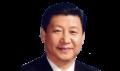 icon polls Xi Jinping